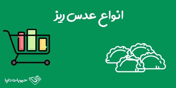 انواع عدس ریز بازار ایران
