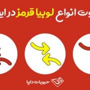 تفاوت اواع لوبیا قرمز در ایران