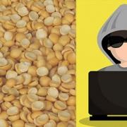 prevent fraud