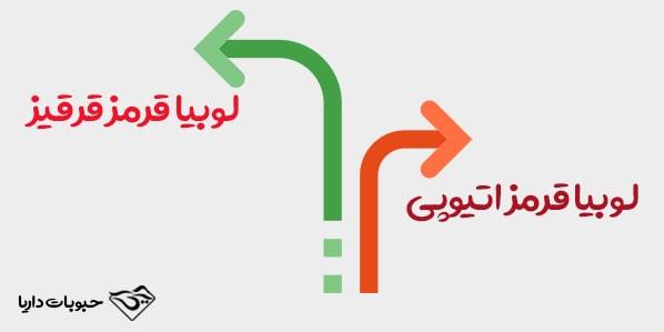تفاوت لوبیا قرمز اتیوپی و قرقیز