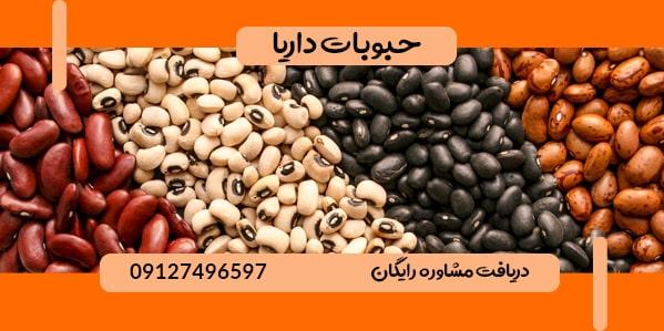 فروش انواع لوبیا سفید وارداتی و صادراتی