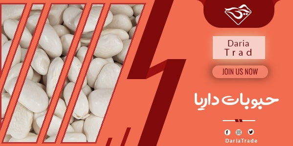 قیمت انواع لوبیا سفید ایرانی