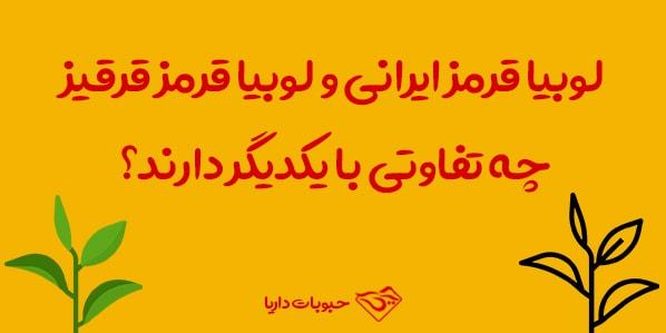 قرمز ایرانی و لوبیا قرقیز چه تفاوتی با یکدیگر دارند؟ min