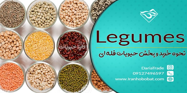 legumes.dariatrade